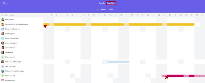 Calendar - Team view